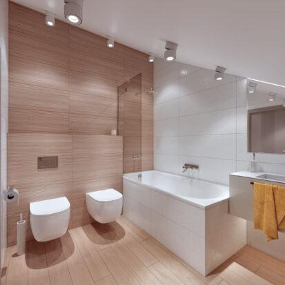 Дизайн дома Запорожье проект туалета