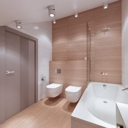 Дизайн дома Запорожье туалет цена